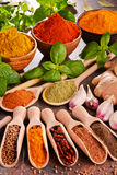 Variety of spices on kitchen table Stock Photos