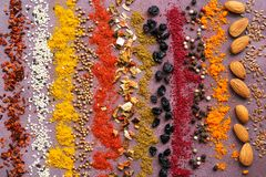 A variety of spices in a row on a purple rustic background. Striped spice background. royalty free stock images