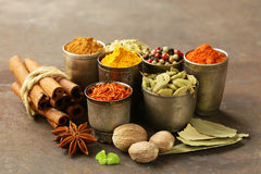 Variety of spices Stock Images