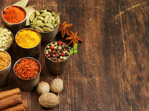 Variety of spices Royalty Free Stock Photos