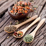 Variety of spices in the spoons. Stock Image