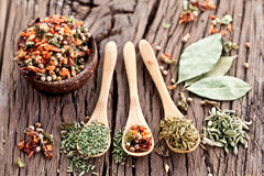 Variety of spices in the spoons. Royalty Free Stock Photo