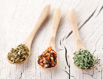 Variety of spices in the spoons. Royalty Free Stock Photography