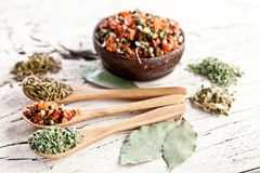 Variety of spices in the spoons. Royalty Free Stock Images