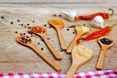 Variety of spices Royalty Free Stock Photo