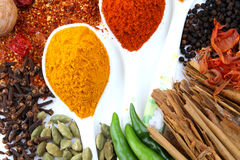 Variety of spices on white background Royalty Free Stock Image