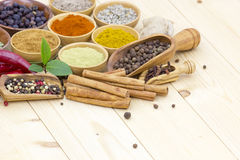 Variety of spices Stock Image
