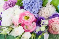 Variety of spring flowers Stock Photos