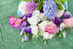 Variety of spring flowers Stock Photography