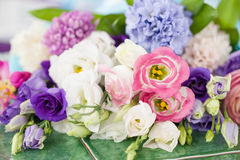 Variety of spring flowers Stock Photo
