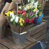 Variety of spring flowers in pots Stock Photo