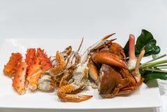 Steam crab Stock Image