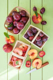 Variety of stone fruits Stock Photos