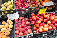 Variety of Summer Fruit for Sale stock photography