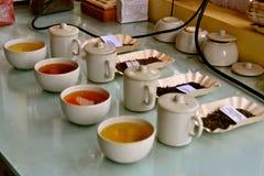 Variety of Tea Stock Image