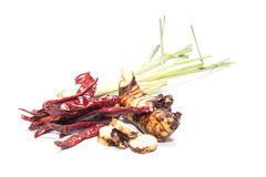 Variety of Thai cooking ingredients Stock Photography