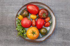 Variety of tomato Royalty Free Stock Photos