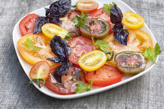 Variety of tomato Stock Photography
