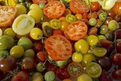 Variety tomatoes Royalty Free Stock Photos
