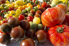 Variety tomatoes Stock Photo