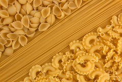 Variety of types and shapes of dry Italian pasta vector illustration