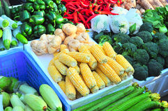 variety vegetable booth Stock Image