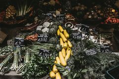 Variety Of Vegetables Royalty Free Stock Images