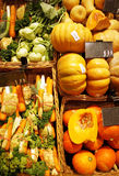 Variety of vegetables Royalty Free Stock Image