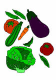 Variety of vegetables on white background Stock Images