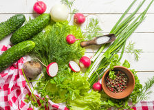 Variety of vegetables on a white wooden table together with a red checkered cloth. View from above Stock Image