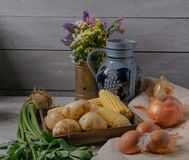Variety of vegetables on stock image