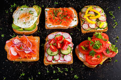 Variety of vegetarian toast sandwiches with salmon, raddish, tomatoes, cucumber, avocado,fried egg and sweet pepper Royalty Free Stock Image