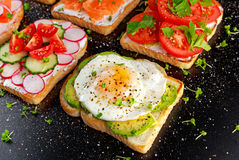 Variety of vegetarian toast sandwiches with salmon, raddish, tomatoes, cucumber, avocado,fried egg and sweet pepper Royalty Free Stock Photography