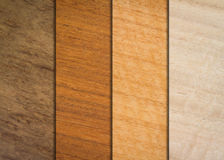Variety wood textures Stock Image