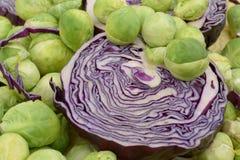 Vario col verde de la cabeza del litlle en la col violeta Foto de archivo libre de regalías