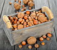 Vario dei dadi in una scatola di legno Immagine Stock Libera da Diritti