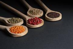 Vario delle spezie in cucchiai di legno Immagine Stock