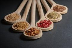 Vario delle spezie in cucchiai di legno Fotografia Stock