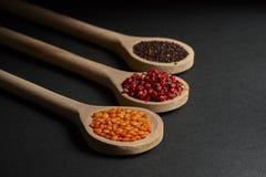 Vario delle spezie in cucchiai di legno Fotografie Stock