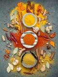 Vario delle spezie e delle erbe in ciotola ceramica Disposizione piana delle spezie Immagine Stock Libera da Diritti