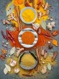 Vario delle spezie e delle erbe in ciotola ceramica Disposizione piana delle spezie Fotografia Stock