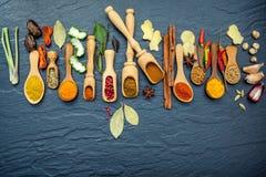 Vario delle spezie e delle erbe in cucchiai di legno Disposizione piana delle spezie Fotografia Stock Libera da Diritti