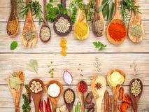 Vario delle spezie e delle erbe in cucchiai di legno Disposizione piana delle spezie Immagine Stock Libera da Diritti