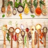 Vario delle spezie e delle erbe in cucchiai di legno Disposizione piana delle spezie Fotografia Stock