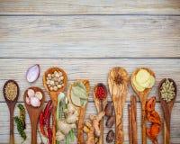 Vario delle spezie e delle erbe in cucchiai di legno Disposizione piana delle spezie Immagine Stock