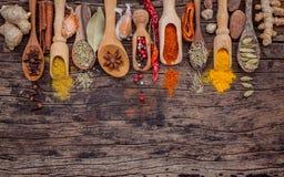 Vario delle spezie e delle erbe in cucchiai di legno Disposizione piana delle spezie Fotografie Stock Libere da Diritti