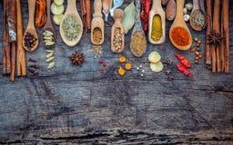 Vario delle spezie e delle erbe in cucchiai di legno Disposizione piana delle spezie Immagini Stock