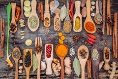 Vario delle spezie e delle erbe in cucchiai di legno Disposizione piana delle spezie Fotografie Stock