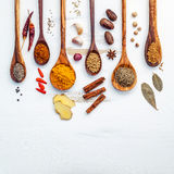 Vario delle spezie e delle erbe indiane in cucchiai di legno Disposizione piana di Immagine Stock
