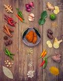 Vario di alimento tailandese che cucina gli ingredienti ed il passo di danza rosso del curry della spezia Immagini Stock